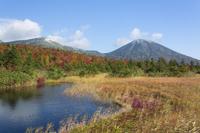青森県 睡蓮沼と八甲田連峰