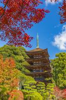 山口県 瑠璃光寺五重塔