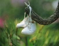 木につるした子供の靴