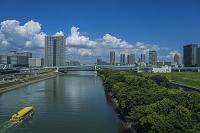 東雲運河と豊洲、東雲のビル群