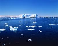 氷山 南極