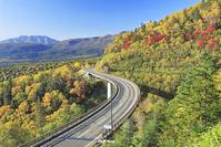 北海道 三国峠の紅葉