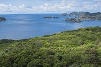 三日月山から望む弟島方面の海
