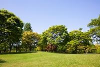大阪府 大阪市 鶴見緑地公園