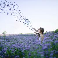 風で花びら舞う花畑に立つ女性