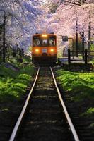 青森県 芦野公園駅に近づく津軽鉄道(走れメロス号)と桜