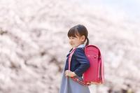 満開の桜と日本の小学生