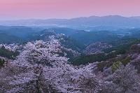 奈良県 吉野町 吉野山