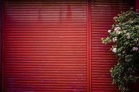 赤いシャッターと植木