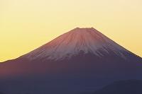 山梨県 櫛形山林道 朝日差す富士山