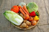 野菜 いろいろ