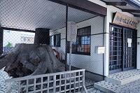 愛知県 御油ノ松並木資料館