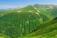 富山県 三俣蓮華岳から水晶岳中央奥と立山左奥の山