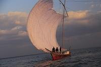茨城 霞ヶ浦の帆引き船