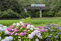 徳島県 阿佐海岸鉄道