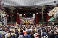 東京都 三社祭