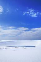 鳥取県 雪に覆われた鳥取砂丘とオアシス