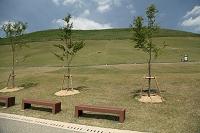 奈良公園 若草山前のベンチ