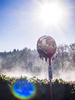 靄が沸き立つ氷点下の朝
