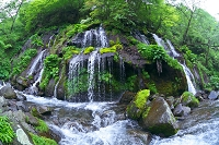 山梨県 川俣川渓谷 吐竜の滝