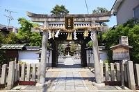 京都府 大将軍八神社 石鳥居と神門と本殿