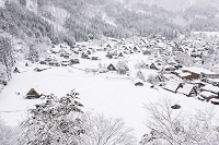 岐阜県 城山より雪の白川郷荻町合掌造り集落