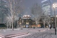 東京都 東京駅の雪景色