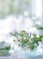 カップに入った花とハーブ