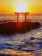 茨城県 大洗磯前神社 海に有る鳥居 朝日