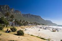 南アフリカ共和国   ケープタウン   ビーチ