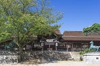 兵庫県 たつの市 室津 賀茂神社