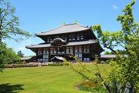 奈良県 東大寺 新緑の大仏殿と青空