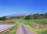 長野県・長野市 畑と戸隠山