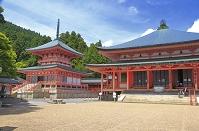 滋賀県 比叡山延暦寺 東塔(左)と阿弥陀堂(右)