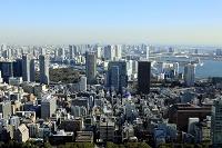 東京都 豊洲方面の街並
