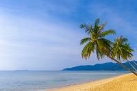 マレーシア ティオマン島の海と砂浜
