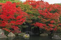 兵庫県 秋の好古園