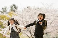 桜の咲く公園で入学を迎える日本人の子供