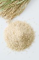 玄米と稲穂