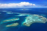 ニューカレドニア グランドテール島南端周辺のサンゴ礁