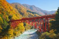 富山県 黒部市 黒部峡谷トロッコ電車
