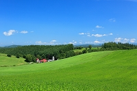 北海道 草原
