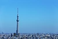 東京都 東京スカイツリー