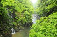 山梨県 釜沢の滝と清水渓谷と新緑