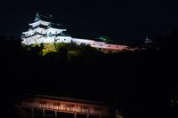 和歌山県 和歌山城の夜景 天守と御橋廊下