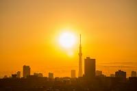 東京 日の出