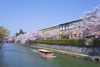 京都市 岡崎 琵琶湖疏水