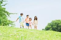 原っぱで遊ぶ日本人の子供達