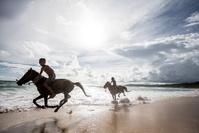 インドネシア 乗馬