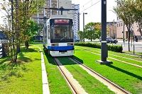 熊本市電 の軌道敷緑化